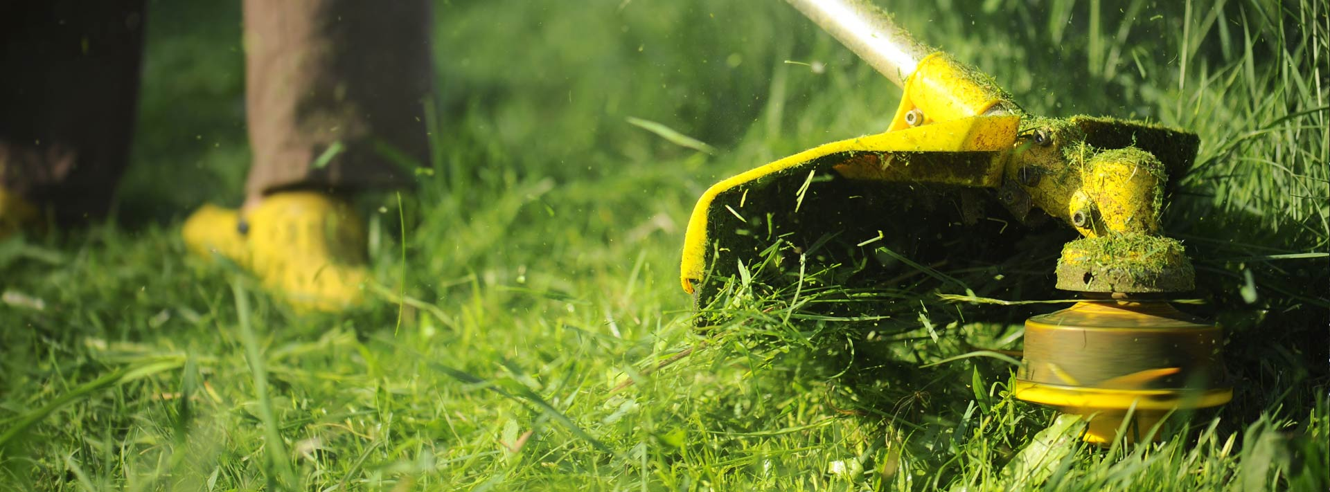 manutenzione-aree-verdi